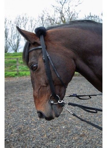 LUNGING ADAPTER 438 SHIRES