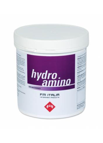 HYDRO AMINO POWDER 600G...