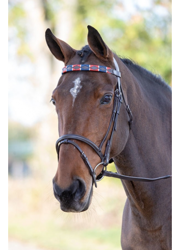 LEATHER POLO BROWBAND 4161...