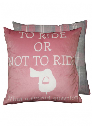 TO RIDE OR NOT TO RIDE...