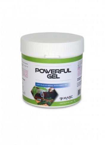 POWERFUL GEL 250 ML 052 MASC