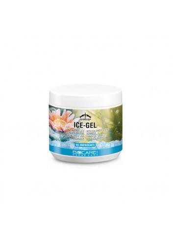 ICE GEL 500ML COG05 VEREDUS
