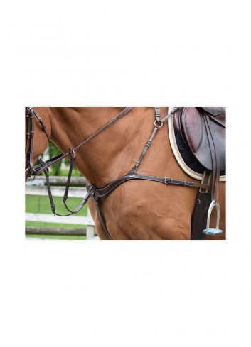 2 IN1 BREASTPLATE ONE...