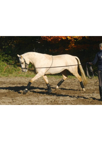 LUNGING AID COTTON 128023...
