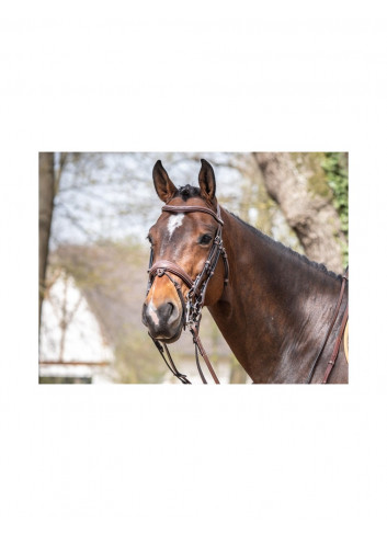 MEGEVE BRIDLE BRIOME JUMP'IN