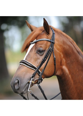 WEIMOUTH BRIDLE ANTONIA...
