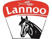 Lannoo-Martens